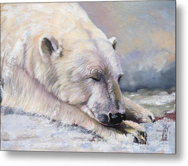 What Do Polar Bears Dream Of Metal Print