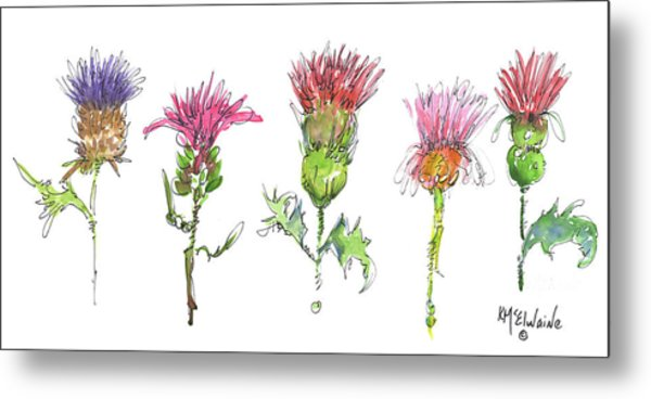 What Is It About A Thistle Fl006 Metal Print