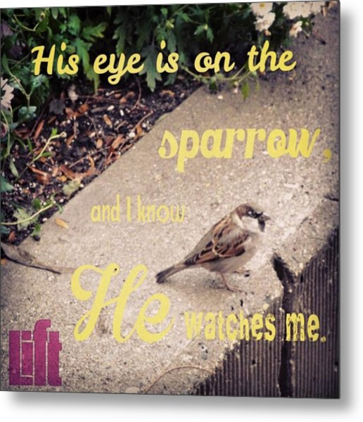 What Is The Price Of Two Sparrows-one Metal Print