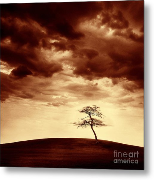 What Will Be The Legacy Metal Print