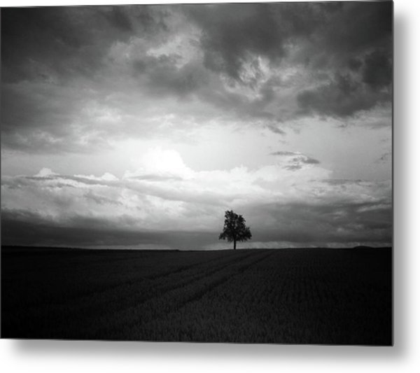 When Night Falls Metal Print