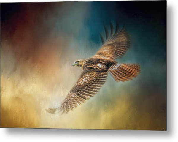 When The Redtail Flies At Sunset Hawk Art Metal Print