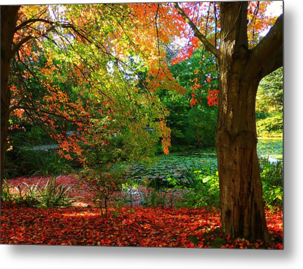Where Autumn Lingers  Metal Print