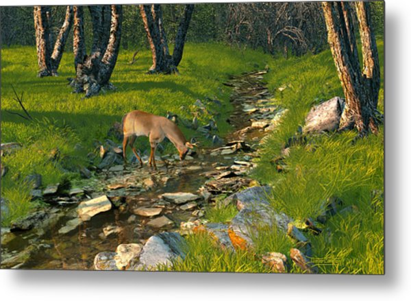 Where The Buck Stops Metal Print
