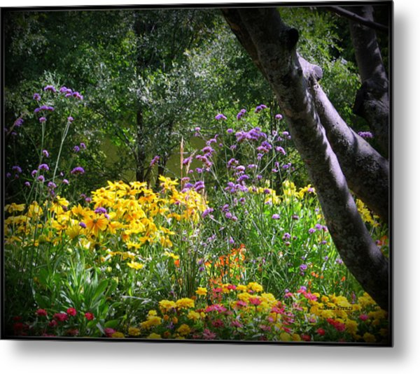 Where The Wild Flowers Grow Metal Print by Trina Prenzi