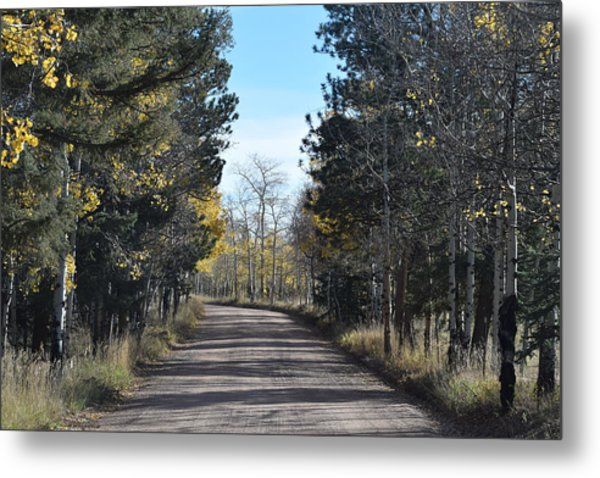Cr 511 Divide Co Metal Print