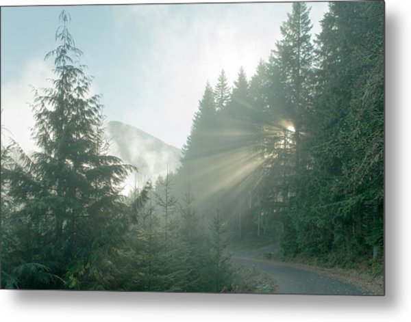 Where Will Your Road Take You? Metal Print