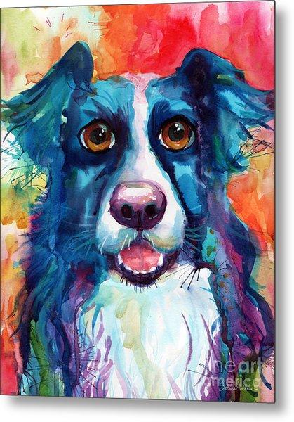 Whimsical Border Collie Dog Portrait Metal Print