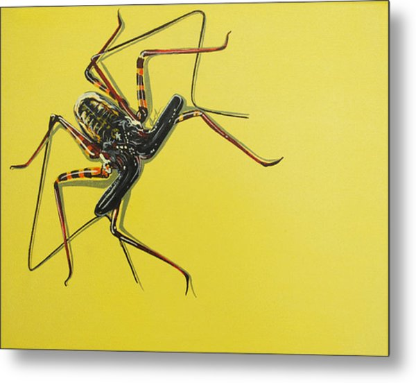 Whip Scorpion Metal Print