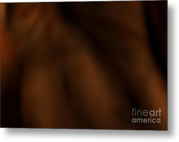 Whispers In The Dark Metal Print