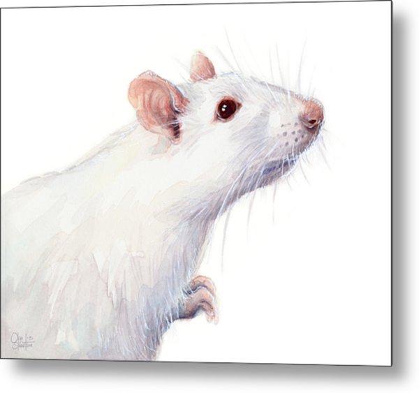 White Albino Rat Watercolor Metal Print