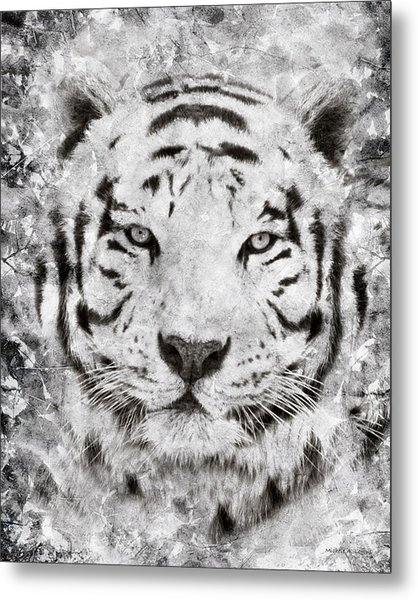 White Bengal Tiger Portrait Metal Print