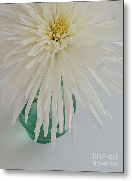 White Flower In A Vase By Jasna Gopic Metal Print
