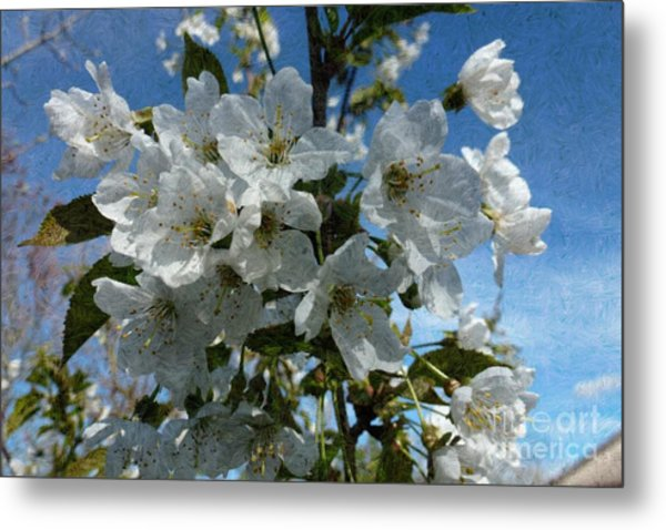 White Flowers - Variation 2 Metal Print