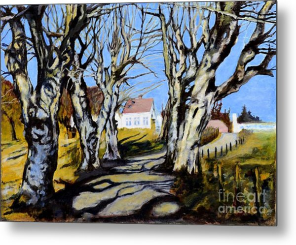 White Grove Metal Print