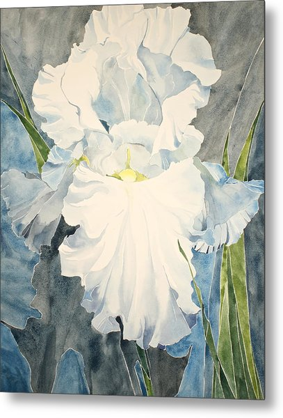 White Iris - For Van Gogh - Posthumously Presented Paintings Of Sachi Spohn   Metal Print