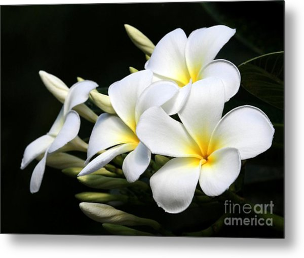 White Lightning Metal Print
