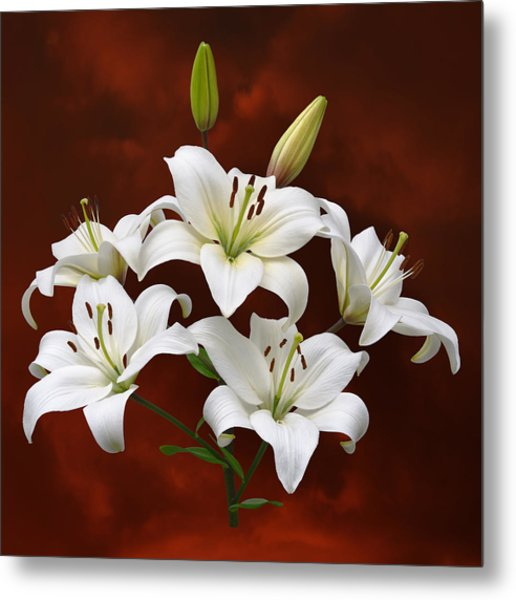 White Lilies On Red Metal Print