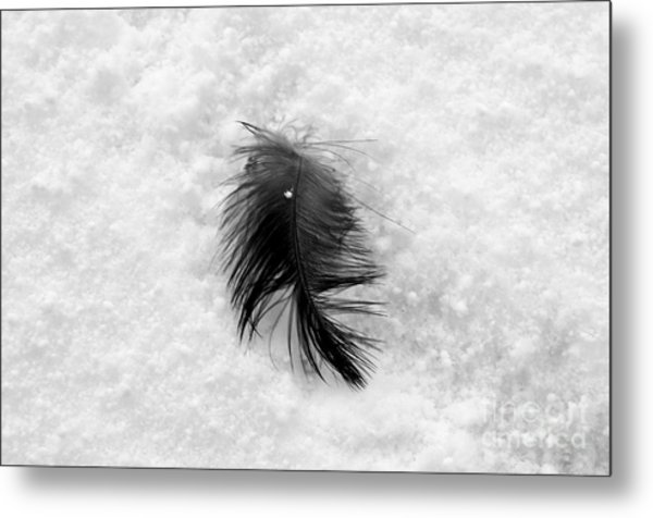 White On Black And White Metal Print