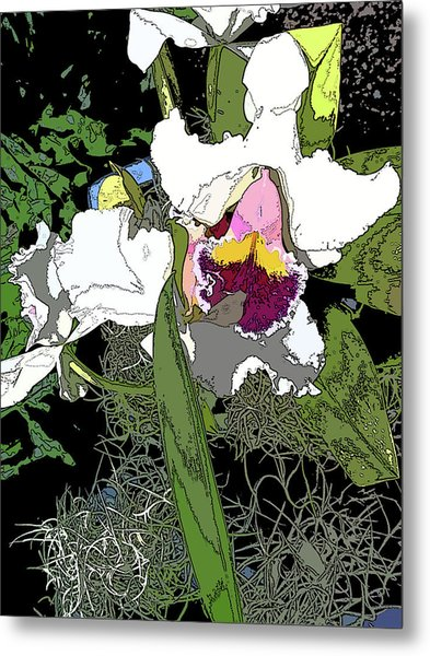 White Orchid Metal Print by Adina Campbell