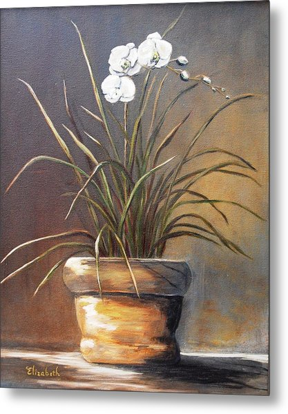 White Orchid In Oil Metal Print by Beth Maddox