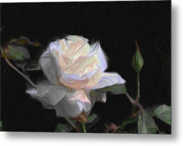 White Rose Painting Metal Print