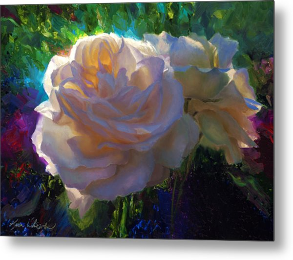White Roses In The Garden - Backlit Flowers - Summer Rose Metal Print