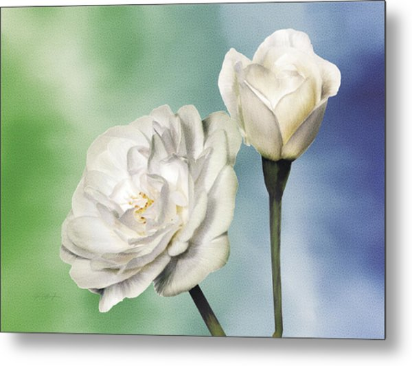 White Roses Metal Print by Jan Baughman