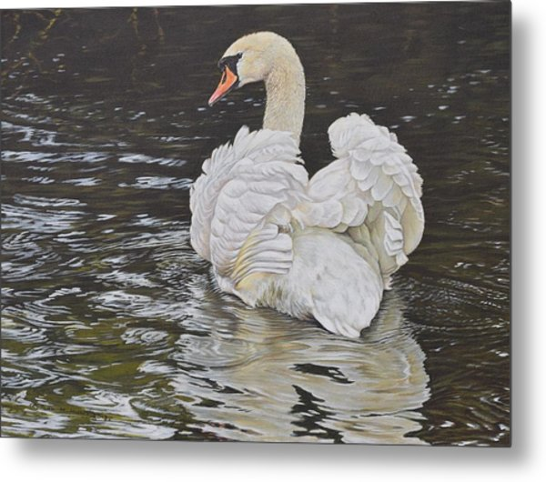 Metal Print featuring the painting White Swan by Alan M Hunt