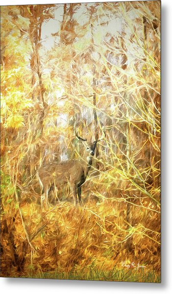 Metal Print featuring the digital art White-tail Woods by Barry Jones