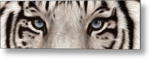 White Tiger Eyes Metal Print