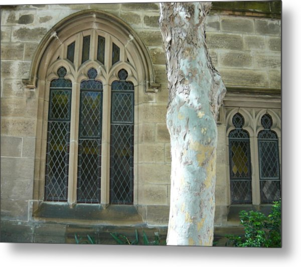 White Tree By St Andrews Metal Print by Adrianne Wood