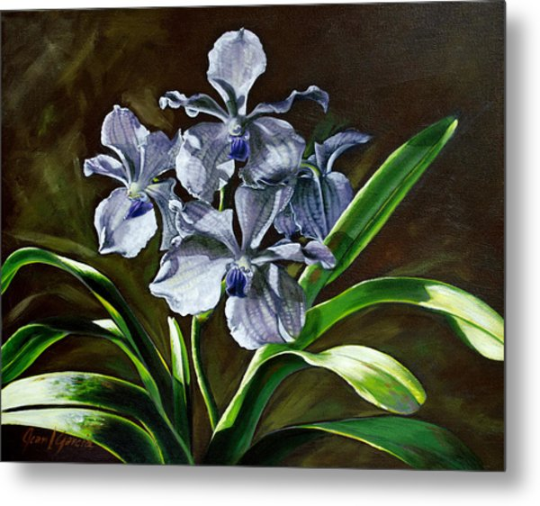 Morning Vanda Metal Print