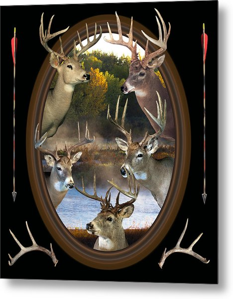 Whitetail Dreams Metal Print