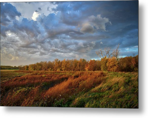 Who Has Seen The Wind? Metal Print