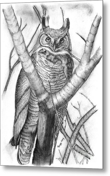 Whooo Metal Print by Russ  Smith