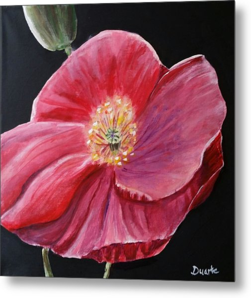 Shirley Poppy Metal Print