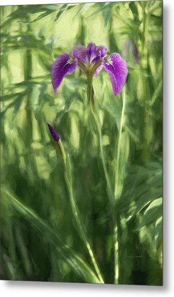 Metal Print featuring the photograph Wild Alaskan Iris II by Penny Lisowski