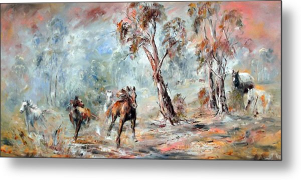 Wild Brumbies Metal Print