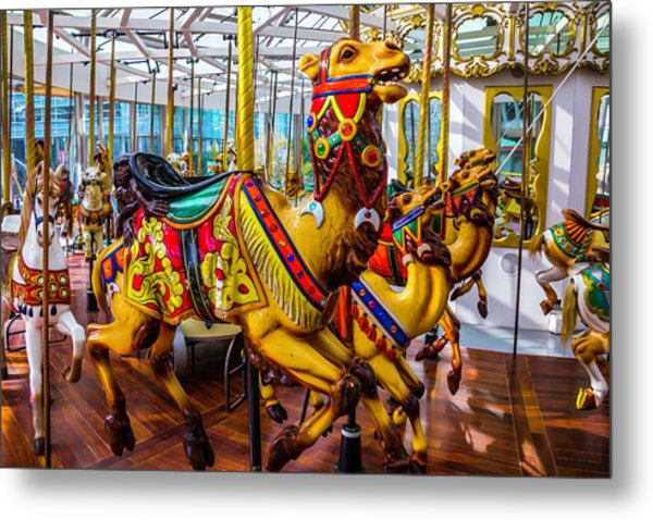 Wild Camel Carrousel Ride Metal Print