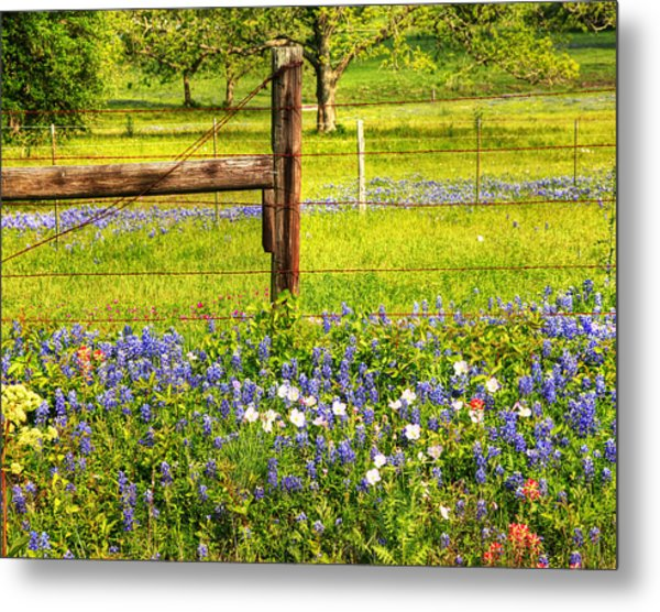 Wild Flowers And A Fence Metal Print