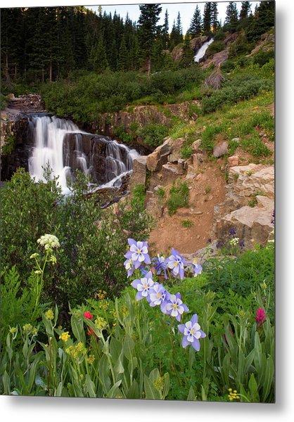 Wild Flowers And Waterfalls Metal Print