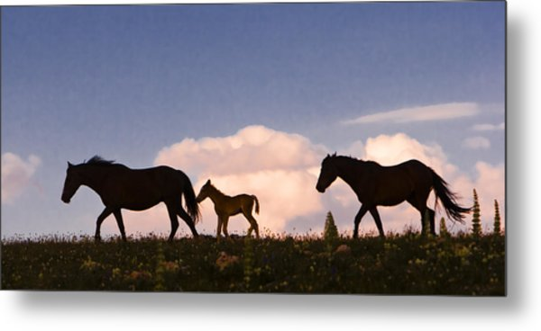 Wild Horses And Clouds Metal Print