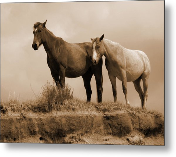 Wild Horses In Western Dakota Metal Print