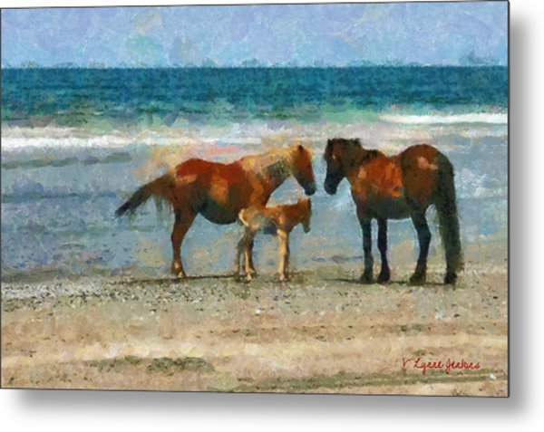 Wild Horses Of The Outer Banks Metal Print