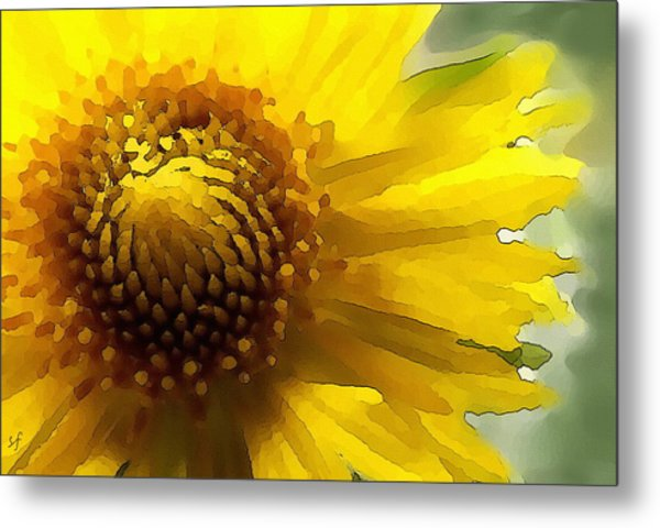 Wild Sunflower Up Close Metal Print