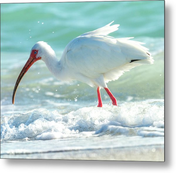 Wild Winds Metal Print