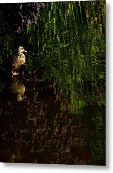 Wilderness Duck Metal Print