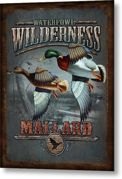 Wilderness Mallard Metal Print