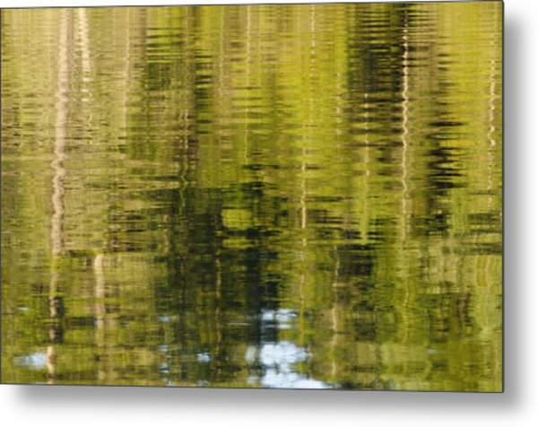 Wilderness Reflections Metal Print
